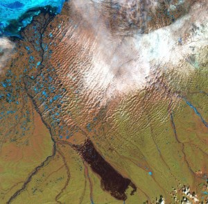 The 2007 wildfire scorched a vast area, as seen in this satellite<br />             image.