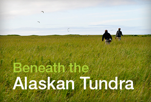 Beneath the Alaskan Tundra