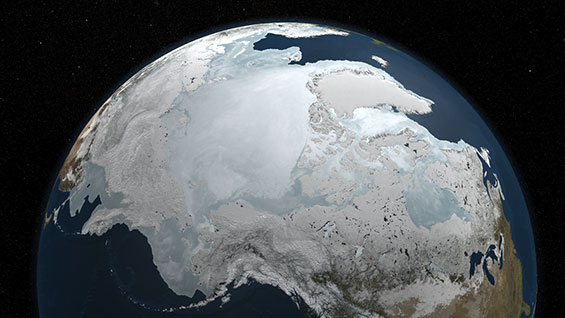 Arctic Sea Ice Ecology