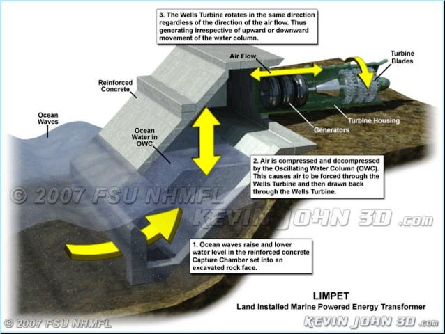 limpetdiagram