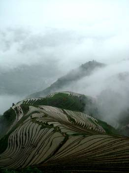 Terrace Farming In China. Source: Wikipedia