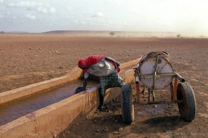 Woman scoops water from a trough.