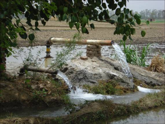 Agriculture in Punjab, India depends heavily on groundwater irrigation.