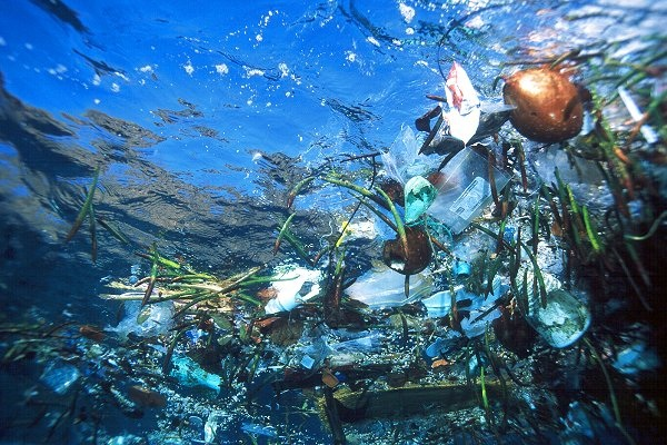 photo from the Great Pacific Garbage Patch