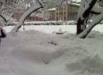 January 2011 Snowstorm