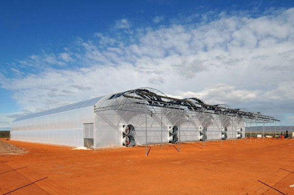 Port Augusta greenhouse, Seawater Greenhouse Ltd.