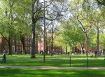 Harvard Yard. Source: Wikimedia.