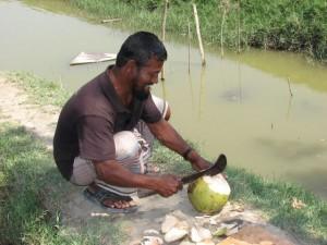 Mr. Islam cuts us some green coconut.