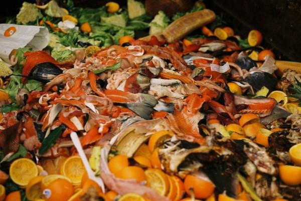 Wasting Food = Wasting Water Wasting Food