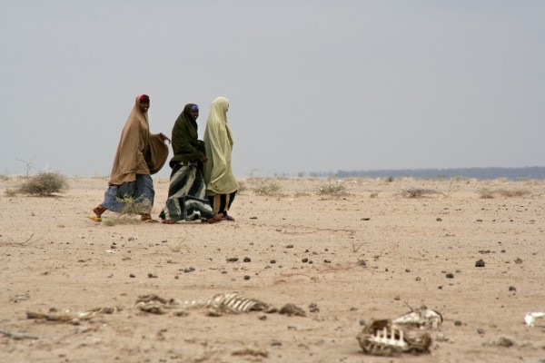 Short rainfall from October to December of 2005 caused Kenyans to experience a severe drought throughout early 2006. Drought over the past two years is once again causing displacement in the Horn of Africa, and now leading to famine in parts of Somalia. Photo:Beatrice Spadacini/CARE