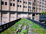 photos of New York City Highline