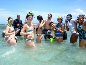 Coral reef bioblitz lab