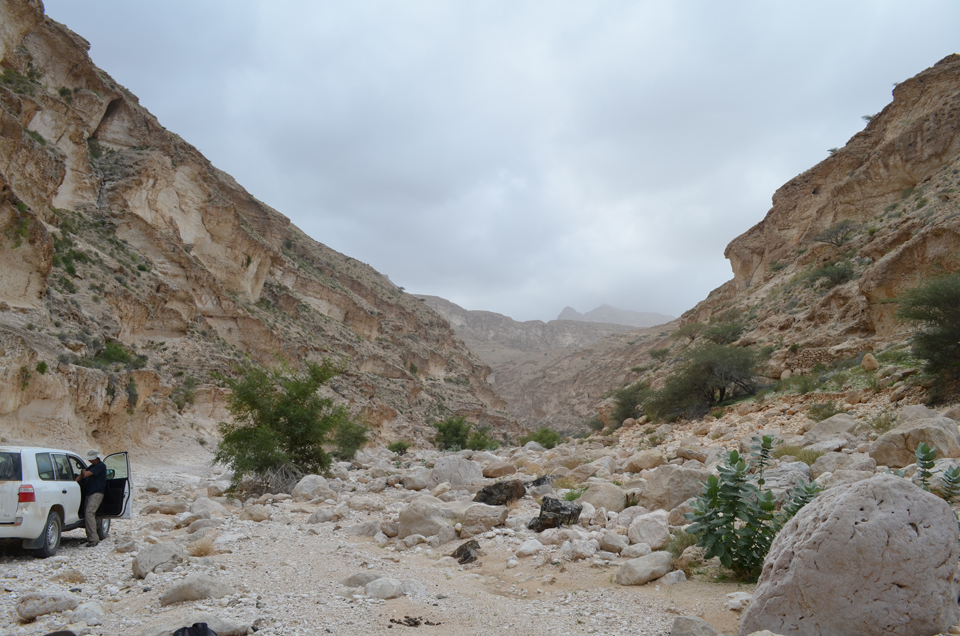 One key study site is Wadi Fins, a precipitous canyon that begins at the seashore and runs straight into the mountains, cutting through many layers of rock.