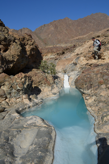 Carbonates form naturally in multiple ways. Here, a spring in a valley called Wadi Sudar gushes water that has passed through peridotite and undergone a series of chemical reactions to become rich in carbon minerals.