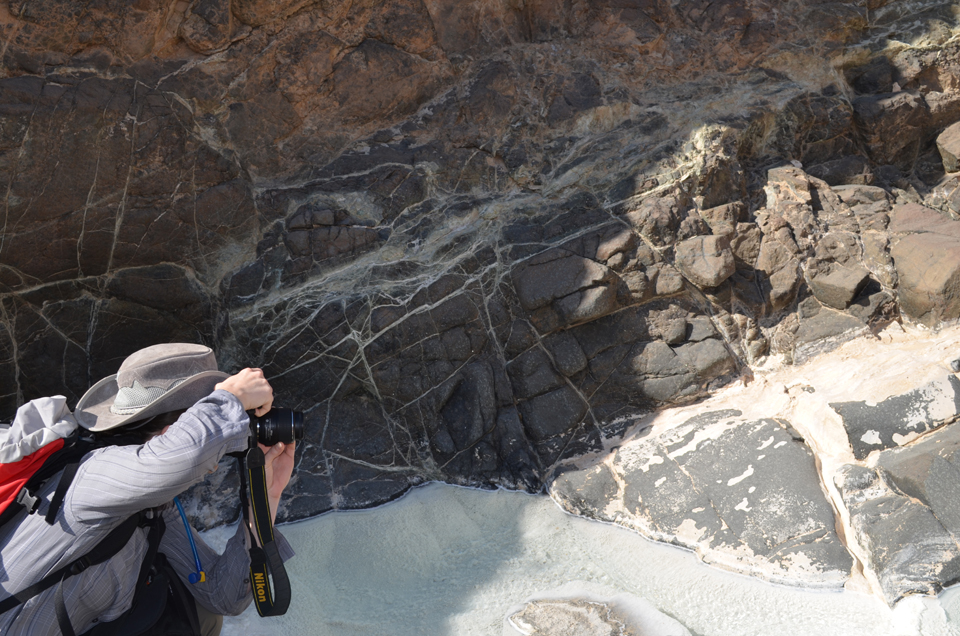 Lamont geochemist Amelia Paukert photographs a wall of peridotite containing whitish veins of solid carbonate that formed underground, when water ran through cracks in the rock. The stream flowing at her feet later cut down through the rock, exposing the cracks.