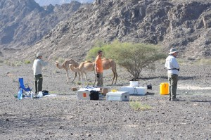 Fieldwork in Oman with colleagues from ASU. Photo: Amelia Paukert, LDEO