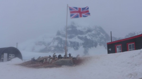 The weather turned during our stop at the historic British Station of Port Lockroy (Photo M. Turrin).The weather turned during our stop at the historic British Station of Port Lockroy (Photo M. Turrin).