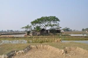 dsc_0040 Bangladesh