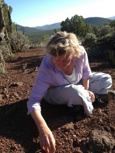 Plank collecting volcanic crystals near the Grand Canyon