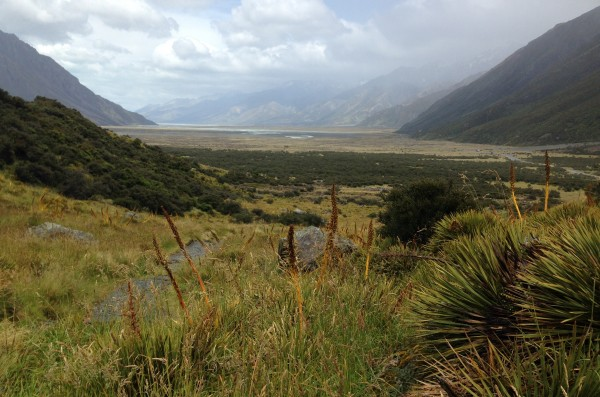 During the last ice age, much of New Zealand's South Island was covered in a thick layer of ice. Over many thousands of years, the glaciers created this U-shaped valley and also turned tons of rock into dust. (Koffman)