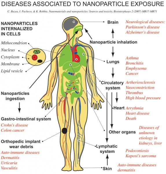 Nanotoxicology