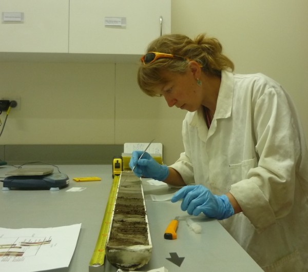These sediment cores span the past 135,000 years and will allow Koffman to see how New Zealand's dust composition has changed through time. (Koffman)