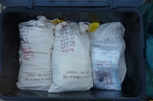 Bags full of samples attest to a successful field season. These samples will provide many weeks of work in the lab -- and new insights into the role of New Zealand dust in the climate system. (Koffman)