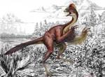 The dinosaur Anzu wyliei. Illustration: Mark Klingler/Carnegie Museum of Natural History