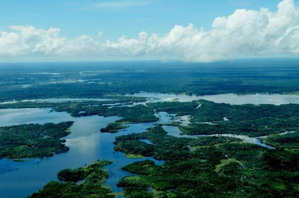 The Amazon rainforest. Photo: CIFOR
