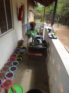 Gatere testing soil samples on a veranda
