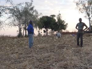 Nkhoma's farm
