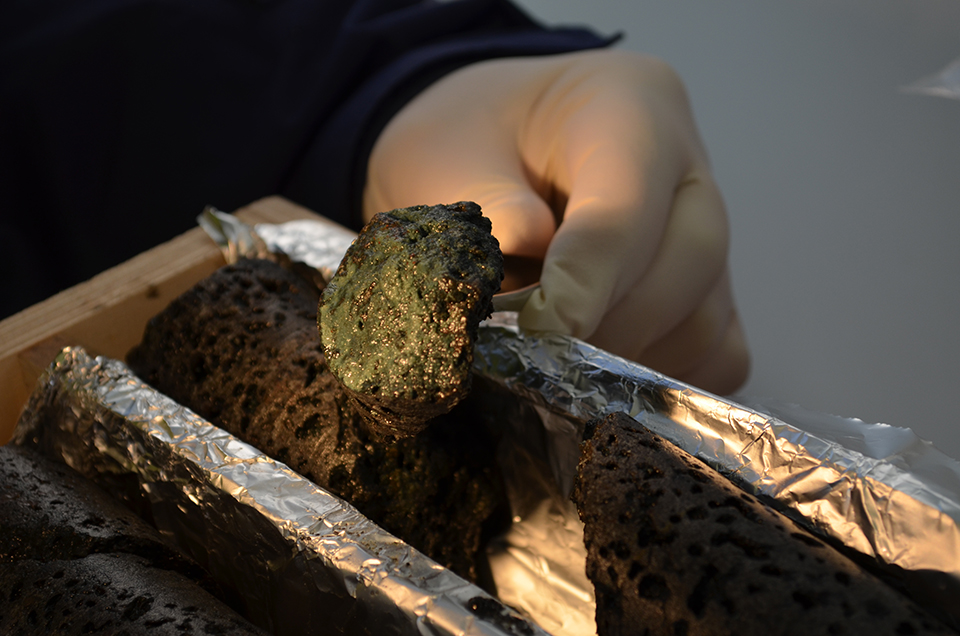 Parts of the core contain green slime—possibly waste products of underground microbes thriving on the rush of pumped-down carbon. The French team believes that injection may drastically alter the little-known ecology of the deep underground, and that biota might play a role in the solidification process. They plan to study DNA in the samples.