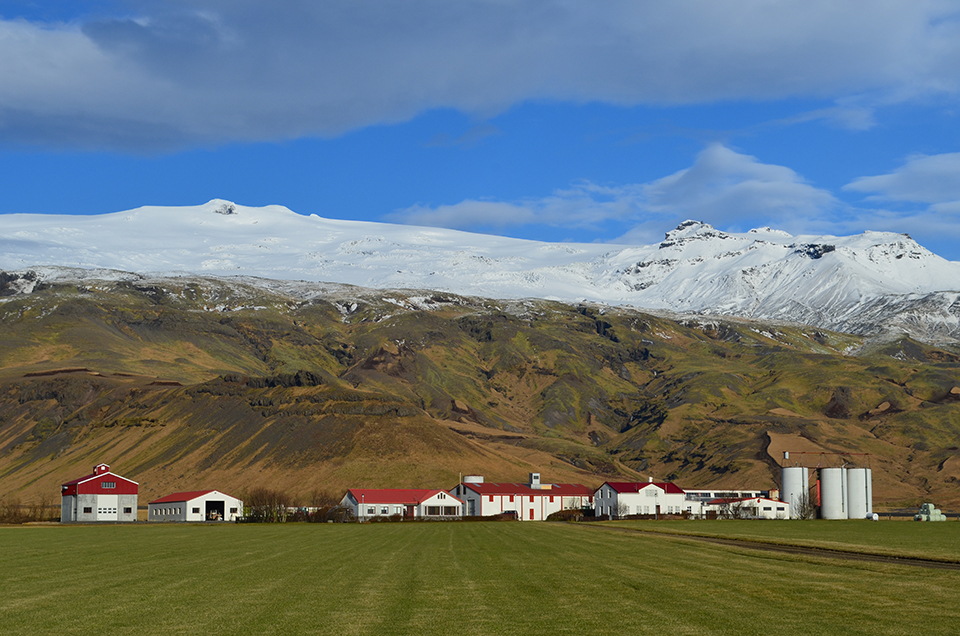 As in much of the north, warming climate is already visibly affecting Iceland, where average temperatures are going up faster than in most of the rest of the world. Some effects are arguably good; for one, farmers who have struggled for centuries against chilly weather are seeing better plant growth. This farm abuts Myrdalsjokull ice cap, on the southeast coast.