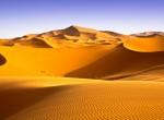 About 10 thousand years ago, North Africa's Sahara Desert was a wide, green landscape. (photo credit: apdesign)