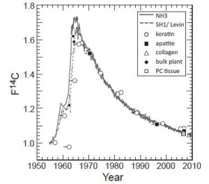 "A chart of the ""bomb curve"" used in dating the two illegal elephant tusks."