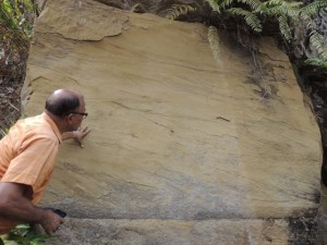 Humayun examining crossbeds in a sanstone outcrop