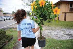 "A student participates in the ""Day of Action"" community service project in conjunction with Miami Children's Initiative in Liberty City"