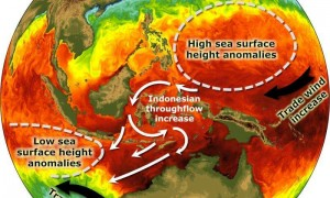 Increases in westward-blowing winds over the Pacific Ocean are thought to be pushing great masses of water--and heat--through the Indonesian straits, into the Indian Ocean.