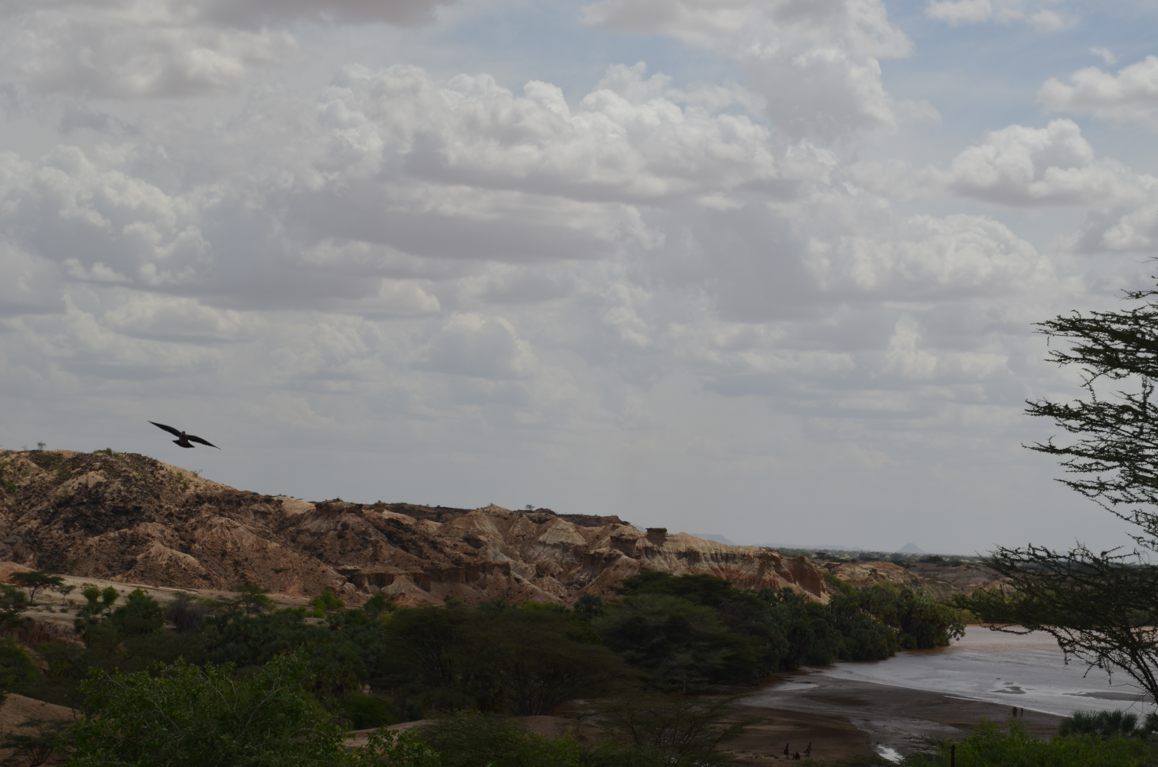 Deeply eroded badlands like these near the Turkwel River are ideal for finding fossils and artifacts.