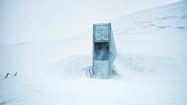 Arctic winds whip around the otherworldly entrance to the Svalbard Global Seed Vault. Photo: Matthias Heyde