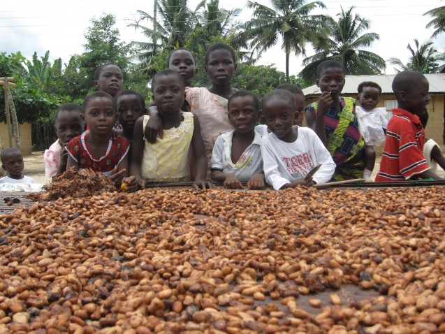 Researchers are calling for more realistic metrics of crop production, which would account for nutrient values, not just bulk. Above, children with a groundnut crop in southern Ghana. (Photo: Kevin Krajick/Earth Institute)