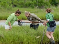 Sandy Hook New Jersey bioblitz