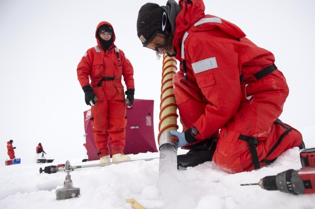 Section of sea ice core collected by drilling into the ice. (Photo Cory Mendenhall, USCG)