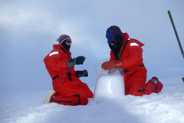 Bagging up the snow from the snow station. Each sample is labeled by quadrant of ice collected. (Photo B. Schmoker)