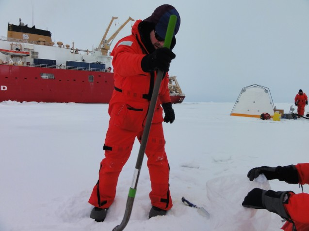 Tim Kenna collecting a snow sample. The sample area is generally 1 or 2 square meters and collected down to the ice. (Photo B. Schmoker)