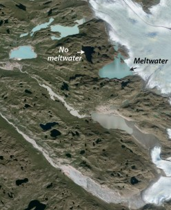 On the western margin of the Greenland Ice Sheet, lakes currently receiving meltwater from the ice sheet appear light blue or gray; lake that do not receive meltwater appear black. Source: Google Earth