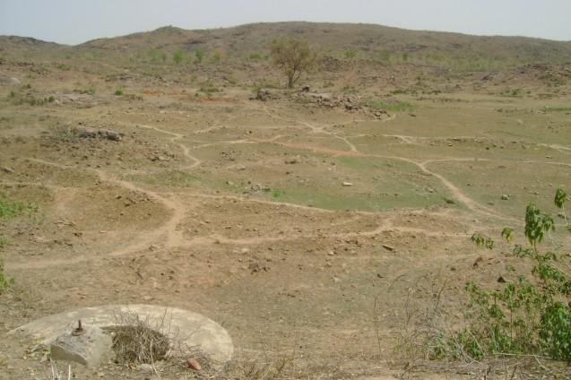 Desert in India.