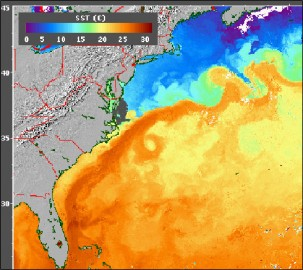 NASA image of the Gulf Stream and sea surface temperatures.