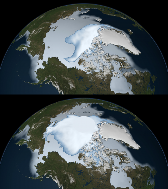 The oldest Arctic sea ice is disappearing. Sea ice coverage in 1980 (bottom) and 2012 (top). Photo: NASA
