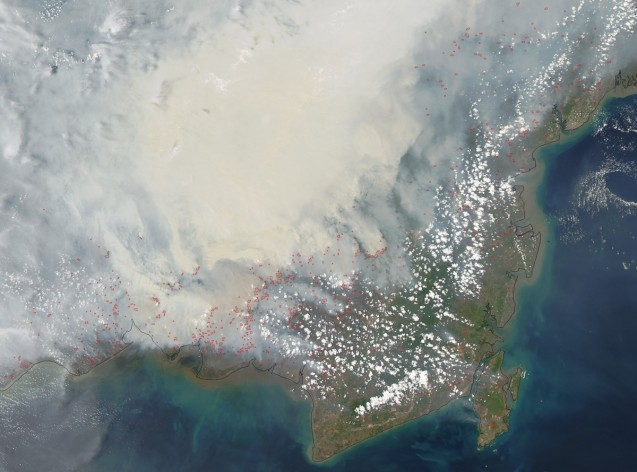 Fires on the island of Borneo are visible from space. (NASA)